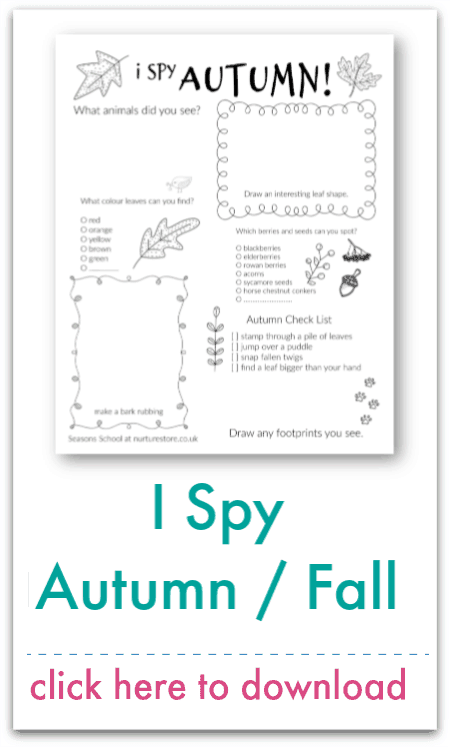 i spy autumn fall
