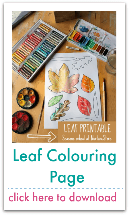 leaf colouring page