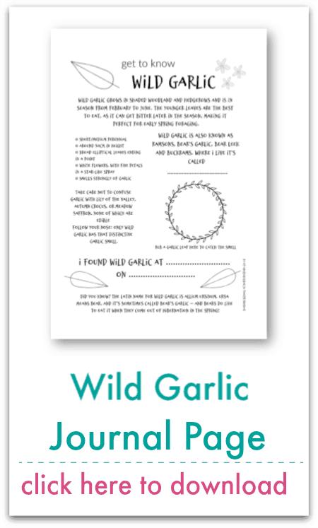 wild garlic journal page