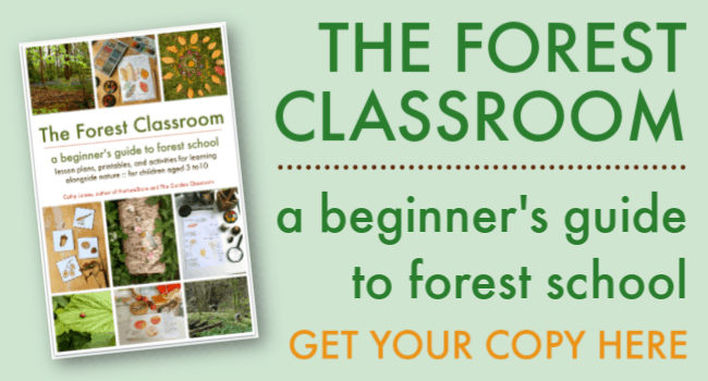 the forest classroom